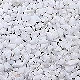 BELLE VOUS Piedra Decorativa - 3,6kg Mini Piedra Jardin Blanca Grava Decorativa Relleno Jarrón (1,2...