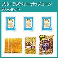 ポップコーン 30人セット ブルーラズベリー マッシュルーム豆 ココナッツオイル 黄