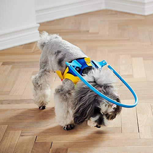 Utente Ciechi Cani Pet Safe Harness Anti-collisione Anello Animali Domestici Deboli Guida Colore Cerchio di Protezione Animali Collare Anelli