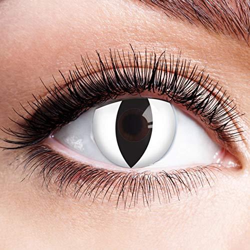 Farbige Kontaktlinsen Ohne Stärke mit Motiv Weiße Linsen Jahreslinsen für Halloween Karneval Party Fasching Cosplay Kostüm Cat Eye Katze Auge Weiß