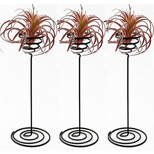 Hetoco Air Plante support Air Plante récipient de base de table Pot de fleurs Pot de fleurs...