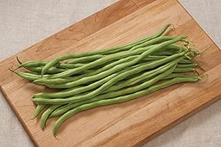 Legend Online Garden Seeds Bean Pole Fortex D34A (Green) 50 Open Pollinated Seeds