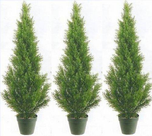 Three 3 Foot Artificial Cedar Topiary Trees Potted Indoor or Outdoor