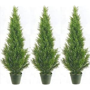 Three 3 Foot Artificial Cedar Topiary Trees Potted Indoor or Outdoor