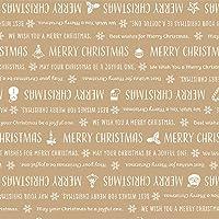 ササガワ タカ印 ラッピングペーパー クリスマス 包装紙 パブロレター 半才判 10枚ロール 49-3569
