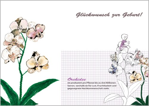 Lena-Hracky set van 5 orchideeën felicitaties voor de geboorte van een baby