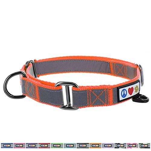 PAWTITAS Martingale Hundehalsband Welpenhalsband Reflektierendes Hundehalsband Trainingshalsband für Hunde Erziehungshalsband für Hunde Klein Hundehalsband Orange Hundehalsband