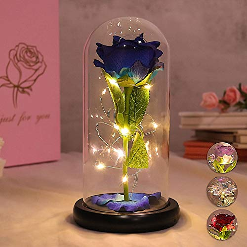 Vieshful Forever Rose in Glass Dome Blue Beauty and The Beast Rose with LED Light ,Artificial Glass Rose Valentine's Day Birthday Mothers Day Wedding for Her