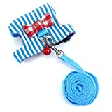 Wontee Small Pet Harness Vest and Leash Set with Bowknot and Bell Decor for Gerbil Guinea Pig Squirrel Kitten Outdoor Walking (M, Blue Stripe)