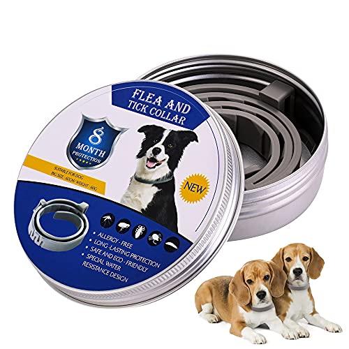 XINLINTRA Collare Antipulci Cane, Antiparassitario per Cani per Tutti i Tipi di Cani Impermeabile Regolabile, di Protezione per Contro Parassiti e Insetti Protezione Stagione Completa (L-62cmN)