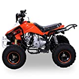 Kinder Quad 125 ccm orange/weiß Panthera - 5