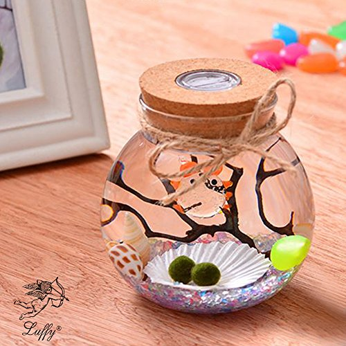 Luffy LED Glass Jar Automatic Multi Colored Light - Thick Durable Glass- Great Creative Corner Decor, in Your Home Garden - Make Original DIY Gifts - Use as Beautiful Night lamp Kids