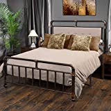 WAYTRIM Vintage Metal Bed Frame Platform with Headboard and Footboard, Heavy Duty Steel Slat Support, Box Spring Replacement, Retro Water Pipe Design - Queen Size