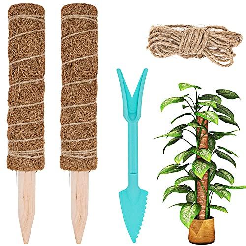 LONHCHI 2pcs 30CM Pflanzenkletterstock, Pflanzstab Kokos Moosstab für Pflanzen, umweltfreundlicher und recycelbarer Stock aus Holz&Kokosfasern mit 1 Sämlingschaufel und 2 m Jutekordel