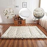 AYDQC Estera de dormir de estilo japonés Tatami Colchón Piso Mat Plegable Hogar Portátil Colchón Fengong