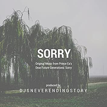 """Sorry (From """"Dear Future Generations: Sorry"""")"""