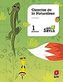 Ciencias de la naturaleza. 1 Primaria. Más Savia. Cantabria