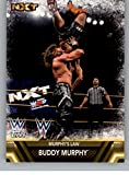 2017 Topps Then Now Forever Finishers and Signature Moves #F-44 Buddy Murphy Murphy's Law
