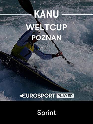 Kanu: ICF Weltcup 2019 in Poznan (POL) - Sprint