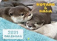 【予約販売】 カワウソ KOTARO&HANA 2021年 壁掛けカレンダー KK21059