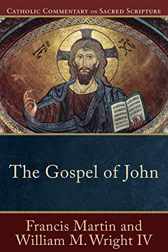 10 best catholic commentary on sacred scripture romans for 2021