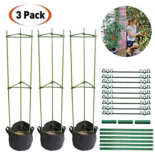 LIBRNTY 3pcs Sturdy Garden Supporto per Piante paletti Gabbia per Piante di...
