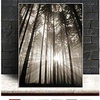 キャンバス絵画太陽の森北欧抽象希望壁の写真リビングルーム風景アート装飾写真スカンジナビアフレームなし