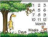 Fashionable Ways, Baby Milestone Blanket Muslin Swaddle Baby Girl Stuff Newborn Photography Prop Personalized Monthly Eucalyptus Wreath cobijas para Bebe boy Woodland Disney Dinosaur embroiled Age