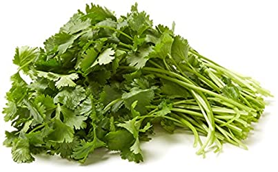 Cilantro, One Bunch