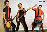 Maxis Green Day - Billie Joe Armstrong Wall Decoration Poster (#005)