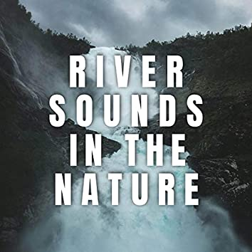 River Sounds in the Nature