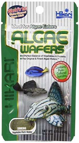 Hikari Algae Wafers for Pets, 0.70-Ounce