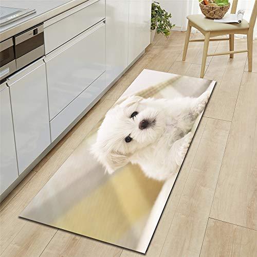 Alfombra para Salón Divertidos, Morbuy Impresión de Perro 3D Interior Franela Fácil de Limpiar Lavable Antideslizante Alfombra de Baño (Terrier Blanco de Las Tierras Altas del Oeste,40x120cm)