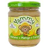Yammy Potito Ecológico de Frutas (Plátano, Cereal) Sin Conservantes, Sin Aditivos, Mango, 12 Tarritos de 195 Gr, 2340 Gramos