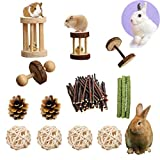 PD Hamster Chew Toys for Teeth, Natural Wood Dumbbells Exercise Bell Roller Molar Toys for Rabbit Bunny Chinchilla Guinea Pig Gerbils Groundhog Squirrels (Style 1)