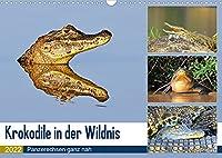 Krokodile in der Wildnis (Wandkalender 2022 DIN A3 quer): Krokodile - die Welt der Riesenechsen (Monatskalender, 14 Seiten )