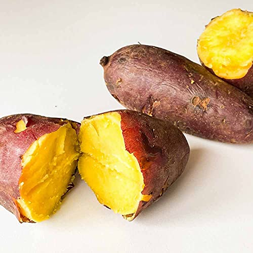 さつまいも シルクスイート 3kg 茨城県産 サツマイモ 甘い 生芋 蜜芋 2021年産 新物