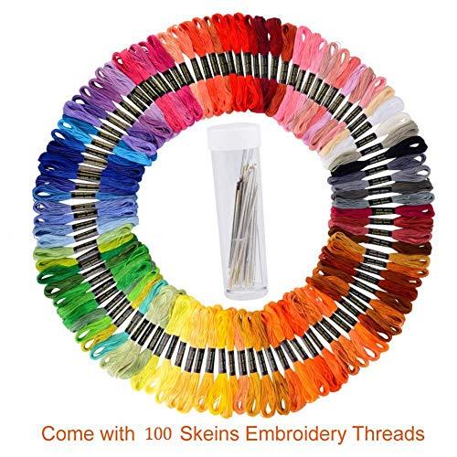 FORD KING Premium Sticktwist in Regenbogenfarben, Kreuzstich-Stickgarn, Freundschaftsarmbänder, Bastelseide, 100 Farben Knäuel pro Packung, 30 Stück gratis Sticknadeln und 2 Einfädler