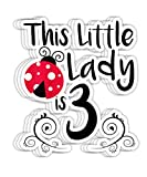 Peach Poem Kids 3 Year Old Ladybug Birthday Lady Bug Party 3rd Gift- 4x3 Vinyl Stickers, Laptop Decal, Water Bottle Sticker (Set of 3)