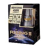 スフィアライト 自動車用LEDヘッドライト RIZING2(ライジング2) H8/H9/H11/H16 4500K SRH11045 日本製 3年保証