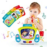 VATOS Musical Toys for Toddlers, Karaoke Singing Box Microphone Music Player with Recoding & Voice Changing Function Development Educational Einstein Toy for Baby Kid Infant Girls Age 2+ Year Old