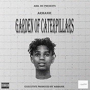 Garden Of Caterpillars