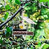 Vogelfutterspender aus Acryl mit Saugnapf Kleiner Hausform Winddichtes Haustier Zubehör Transparentes Wasserdichtes