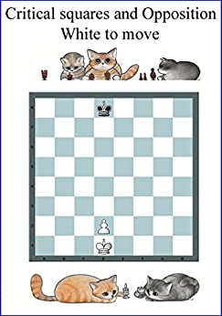 Opposition & Critical Squares: The most important Chess Pattern. A chance to win, draw or lose with the right Move. Just one: Can you afford not to know how? (Chess manual) by [Rodolfo Pardi, Evelyne Nicod]