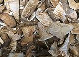 OliveNation Dried Oyster Mushrooms, Organic Sliced Mushroom, Non-GMO, Gluten Free, Kosher, Vegan - 8...