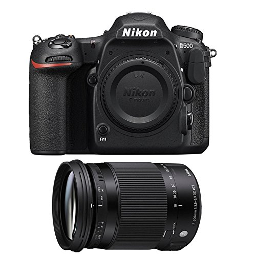 Nikon D500 + Sigma 18-300 Macro OS HSM Contemporary