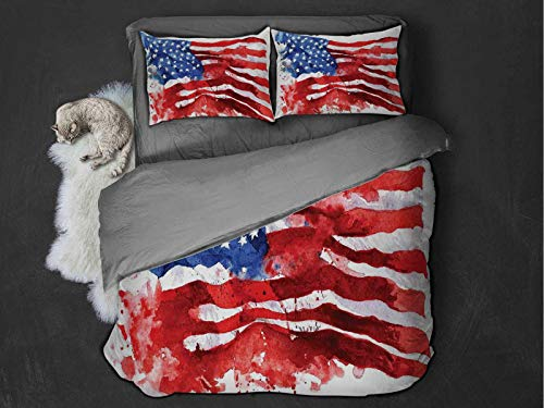 American Flag Decor 3-pack (1 duvet cover and 2 pillowcases) National Paint Brush Watercolor Digital Stroke Messy Graffiti Artsy Decor Polyester (Twin) Red Blue