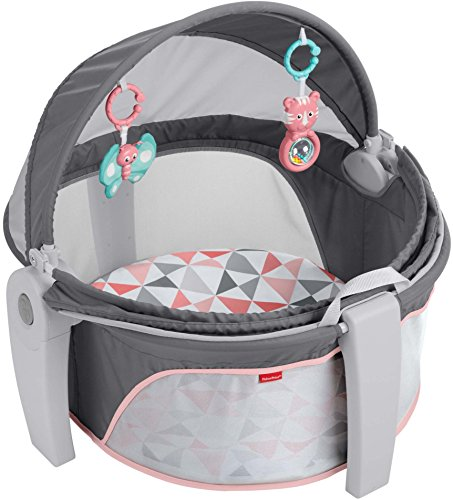 Why Should You Buy Fisher-Price On-The-Go Baby Dome, Rosy Windmill