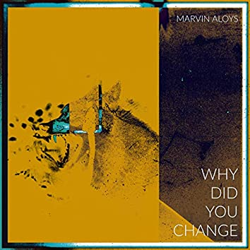 WHY DID YOU CHANGE