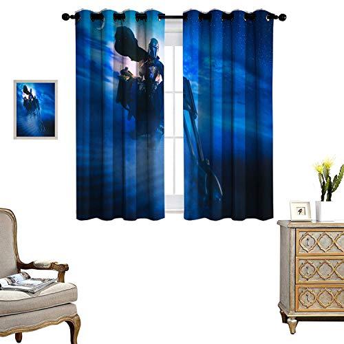 DRAGON VINES Cortinas opacas con bolsillo para barra, para decoración de ventanas, cortina de televisión, de mandalorian, juego de 2 paneles de 55 x 45 cm